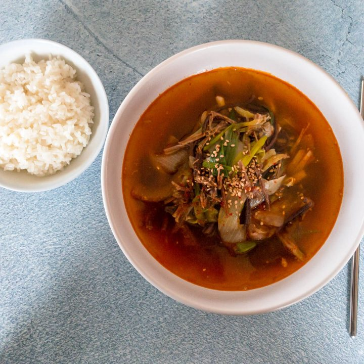 This Korean spicy stew recipe is filled with shredded beef, onions and fernbrake (gosari).